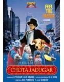 Chota Jadugar DVD
